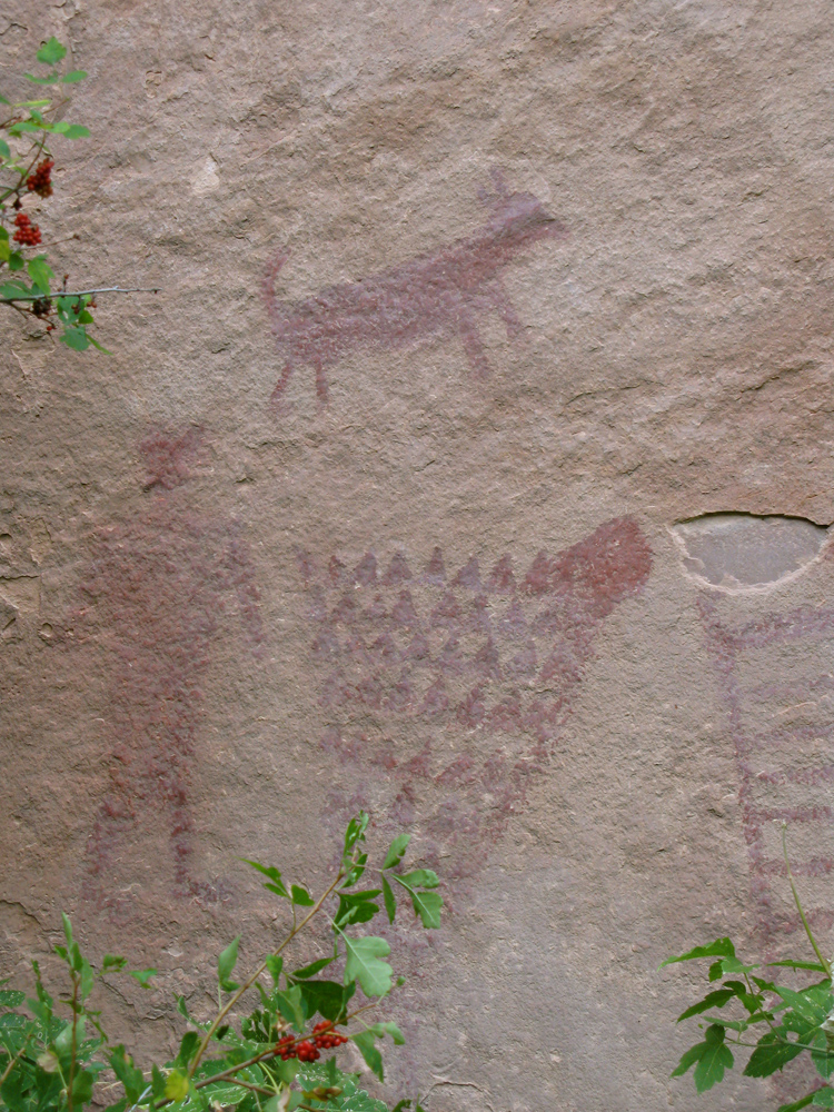 Pictographs, Jones Hole, Green River