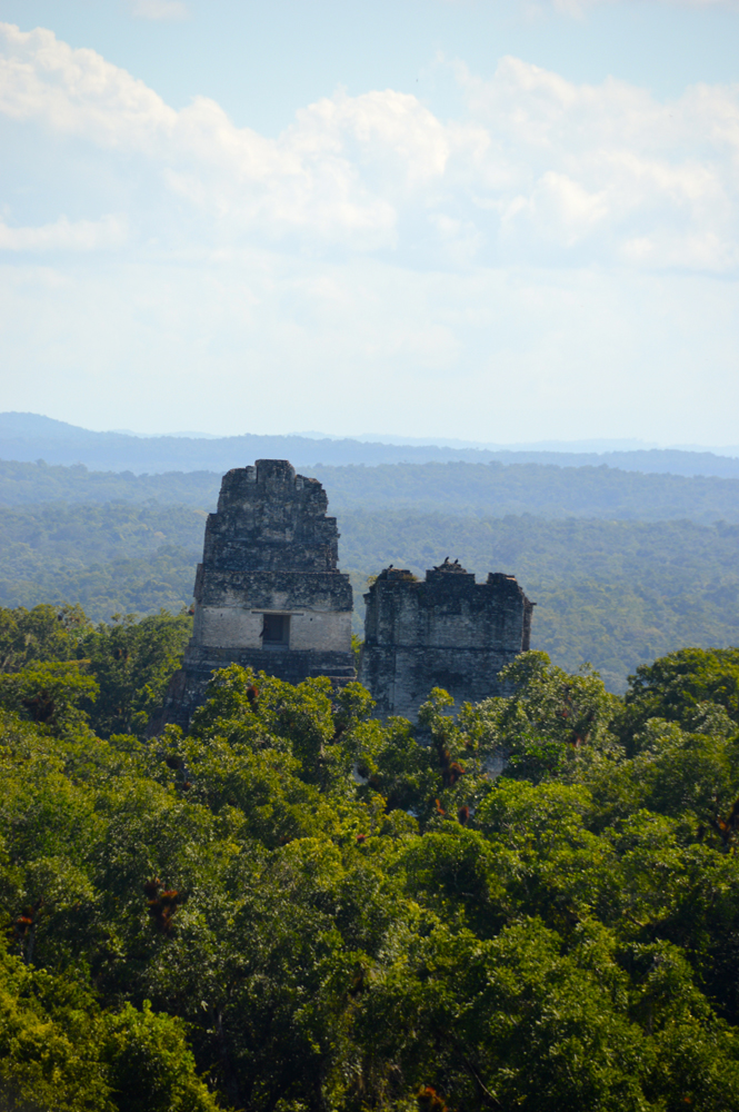 Tikal, View from Temple IV, Guatemala 2012