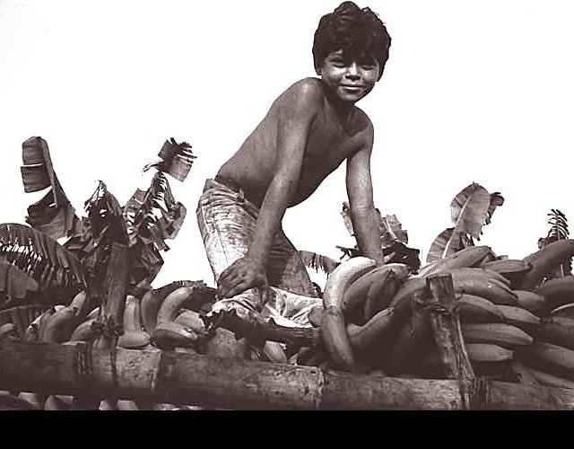 Boy and Bananas, Chinandega, 1983